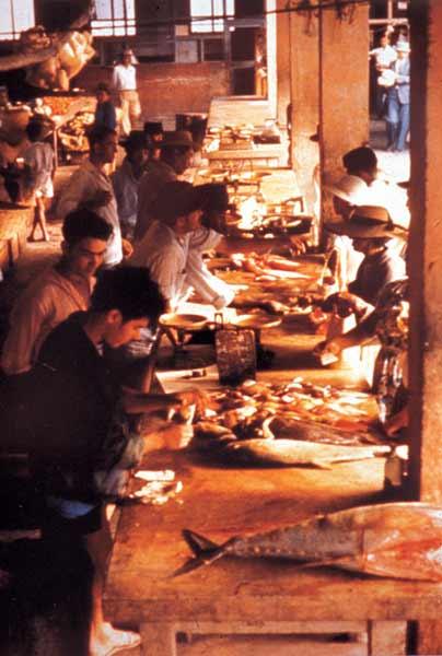 Intérieur du Marché Couvert en 1970 - Source Ville du Port